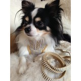 Small Dog Bling Pinstriped Harness and Lead Set
