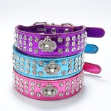 Sale; Reduced from £12.99 - £7.99   Chihuahua & Small Breeds Metallic Bling Collars