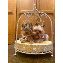 Small Dog Luxury White Metal Bed