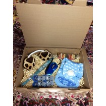 Blue Pet Xmas Gift-box
