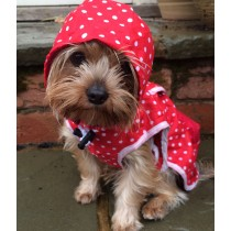 Dog Spotty Rain Coats
