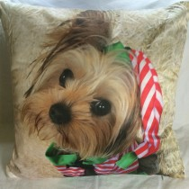 Waggywinks 18 inch Scatter Cushions featuring Buddy