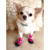 Smart Weather Pet Boots