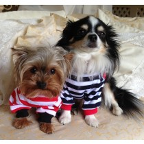 Small Dog Smart Stripe Sweatshirts