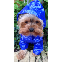 Chihuahua & Yorkshire Terrier Coloured Rain Coats